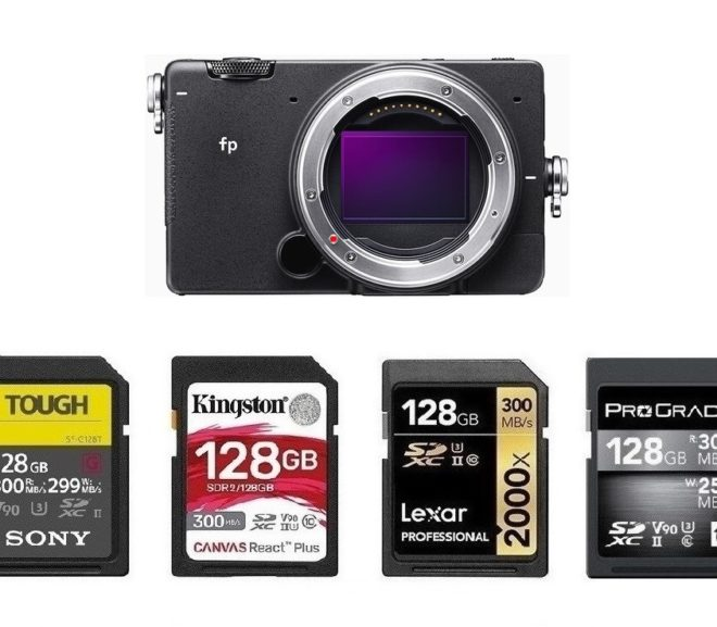 Best Memory Cards for Sigma fp L