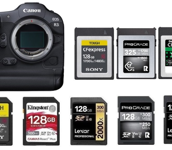Best Memory Cards for Canon EOS R3